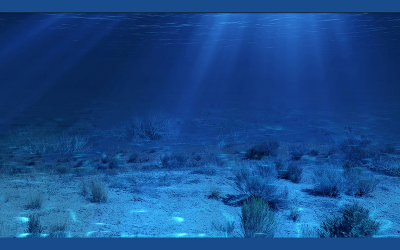 Did you know, interesting facts, unknown facts, facts about ocean, ocean facts, amazing facts about ocean, deep sea facts, facts about deep sea, secrets of deep sea, oceans of the world