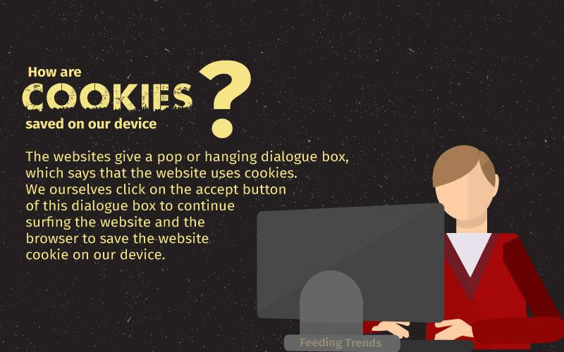 How are cookies saved in our computer?, what are cookies, Cookie, internet cookie, cookie law, cookie law europe, cookie law european union, european union cookie law, europe cookie law, use of cookies, types of cookies, what is cookie, how to use cookie, how to delete cookie, why to accept cookie, deleting a cookie, internet cookie types, internet cookie uses, internet cookie ad targeting, ad targeting using cookies, feeding trends, third party cookie, first party cookie, persistent cookie, session cookie, cookies digital adverts, cookies digital marketing, cookies for advertisements, best cookies to use, what happens after accepting cookies, purpose of storing cookies, trending now, technology trends, cookie trends