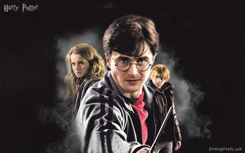 harry potter, harry potter delicacies, harry potter candies, harry potter toad, enchanting delicacies, feeding trends, feeding, trends, harry potter series, author of harry potter, harry potter Hogwarts, harry potter witches, harry potter wizardry, feeding trends, feeding, trends, harry potter plot, harry potter magic spells, article on feeding trends, feeding trends article, harry potter spells meanings, harry potter movie spells,  best hollywood movies, best fiction movie