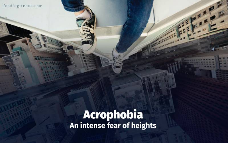 Phobia, phobia kinds, phobia causes, phobia treatments, phobia medication, phobia types, phobia facts, phobia examples, phobia disorder, mental disorder, phobia diagnose, panic attacks,  feeding trends, feeding trends article, article on feeding trends, what is phobia?, phobia definition, phobia therapy, phobia list