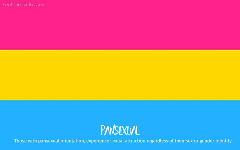 romantic orientation and sexuality, romantic orientation flags, asexual, demisexual, pansexual, demiromantic, what attracts you sexually, affectional orientations, sexual orientations, sexual orientations list, romantic orientations list,  omisexual, bisexual, heterosexual, homosexual, sapiosexual, polysexual, What Attracts You to a Sexual Partner, romantic orientation types list, types of sexualities, types of sexuality, types of romantic orientation,  what is your romantic orientation, sexual identities, gynosexual, androsexual, autosexual, feeding trends, article on sexuality, types of sexuality, sexuality types, sexual orientations, romantic orientations